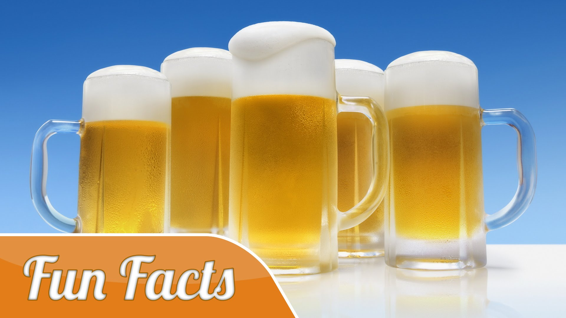 10 Fun Facts About Beer