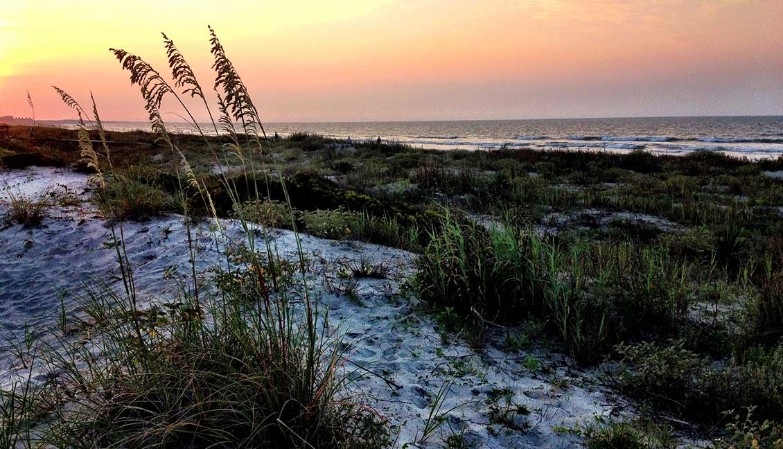 Everything you Need to Know before Visiting These Top Beaches in Charleston