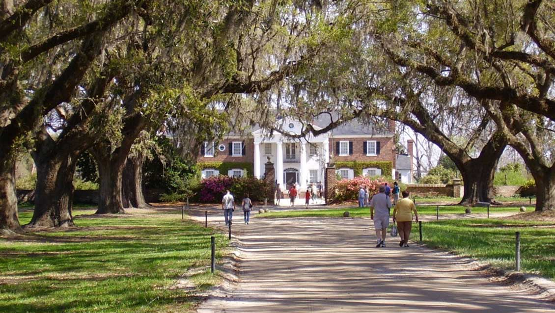 The Ultimate Charleston Plantation Guide